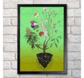 Nature's Healers Poster Print A3+ 13x19in, Ergot, Liberty caps, Fly Agaric, Opium Poppy, Salvia Divinorum, Cannabis